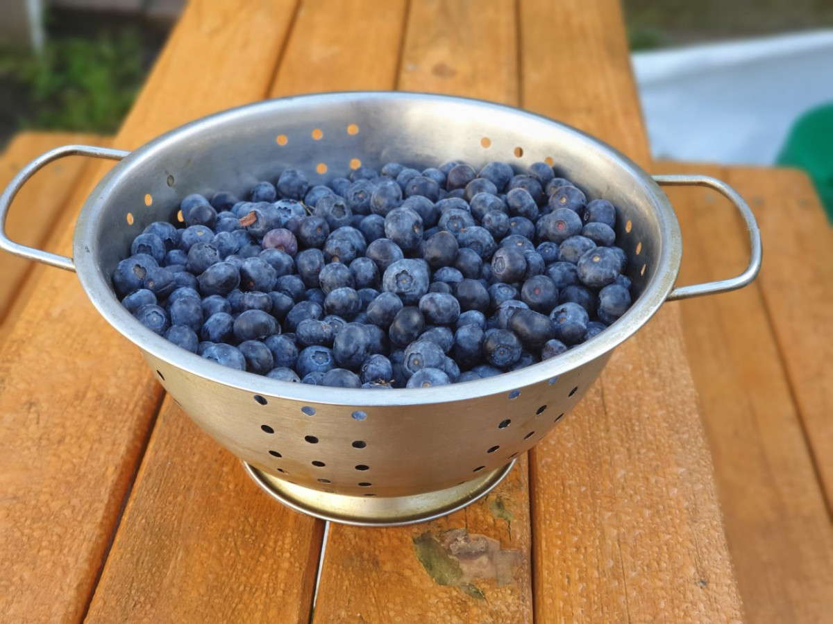 blauwe bessen en vitamine c