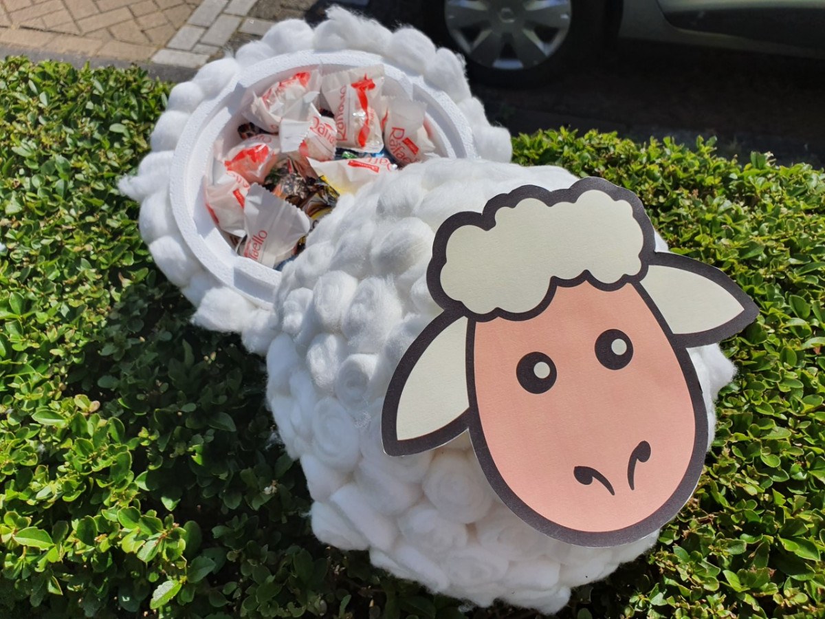 Diy: Schaap surprise