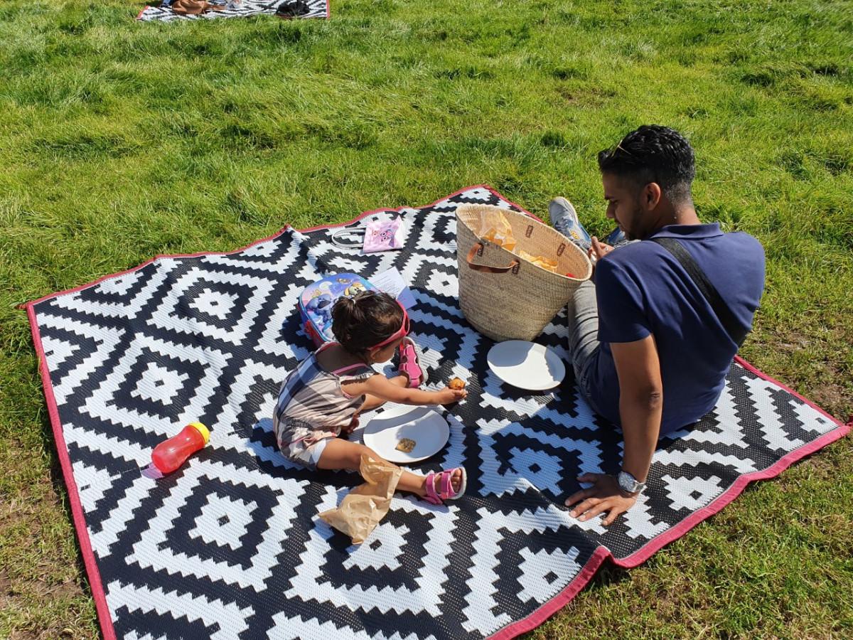 Picknicken bij de alpaca's