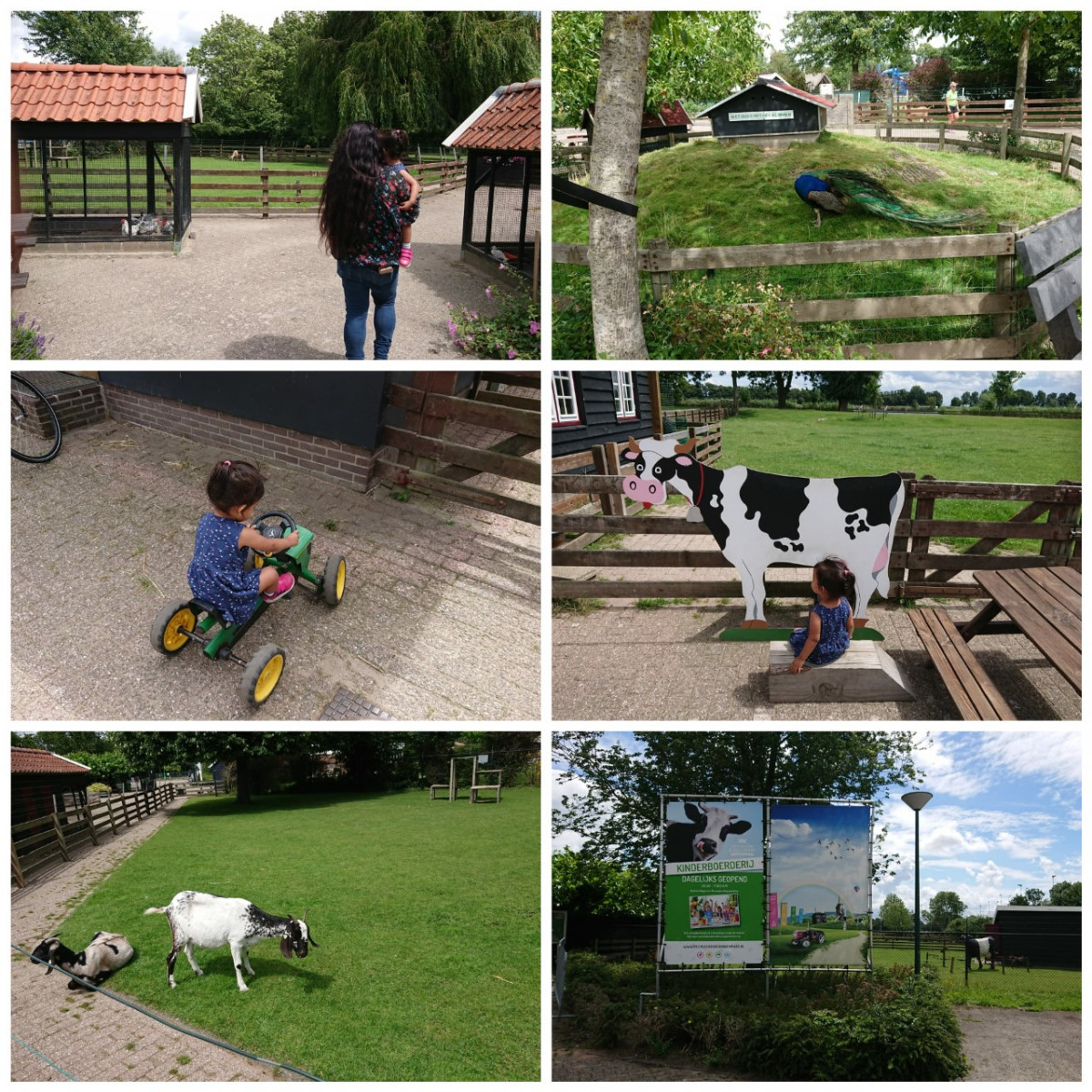 Goedkoop dagje uit op de kinderboerderij