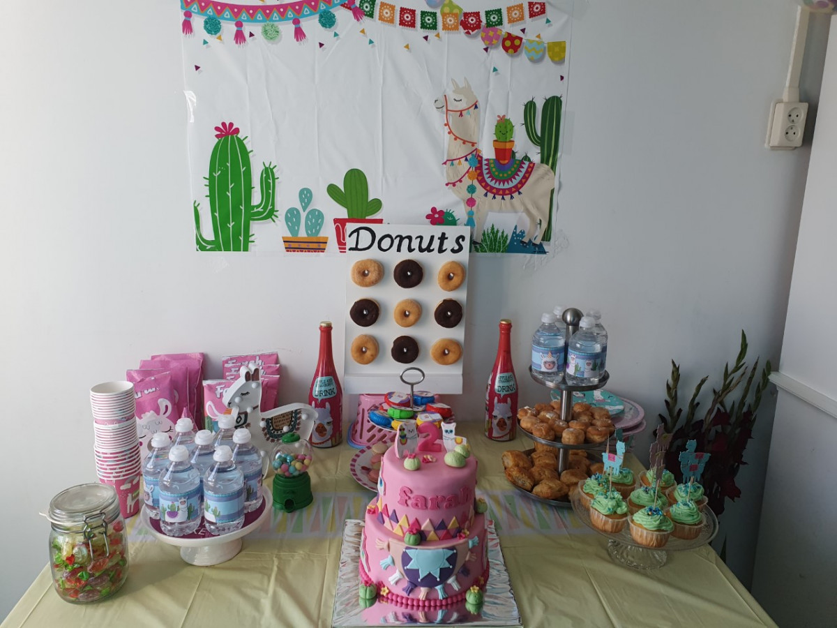 Themafeestjes zijn het leukst! Organiseer een alpaca party! + winactie!