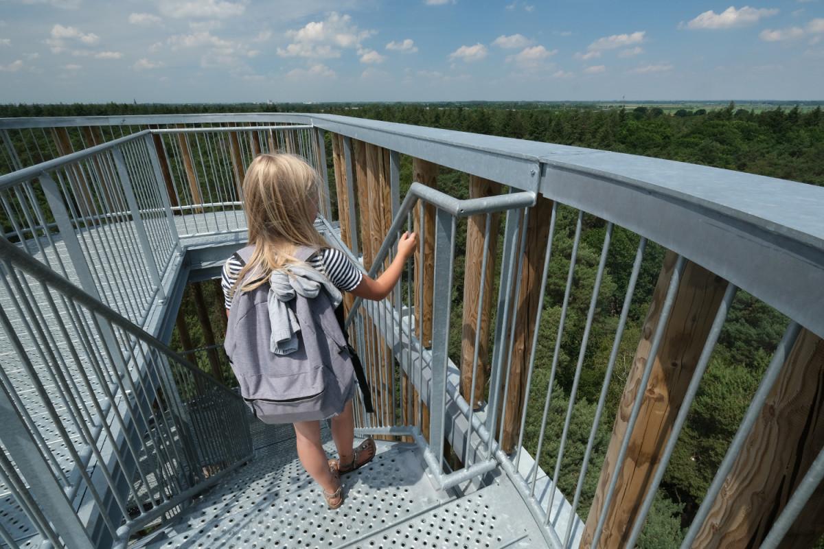 Maashorst uitkijktoren, goedkoop dagje uit