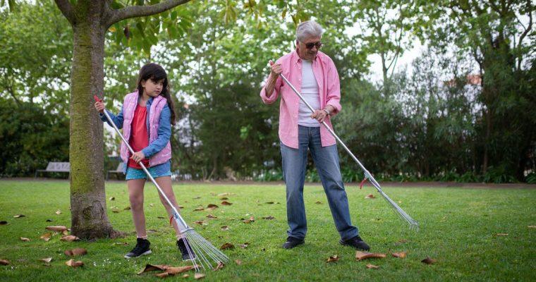 Je tuin schoonmaken is een appeltje eitje met deze 5 tips